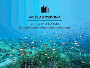 slide_vivelaposidonia